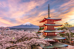 Learn Japanese in our Language School in Munich